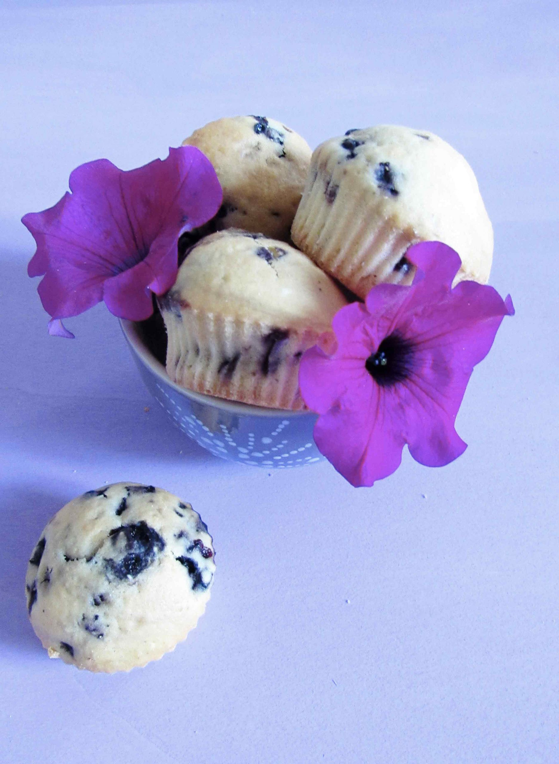 blueberry_muffin_ver_2