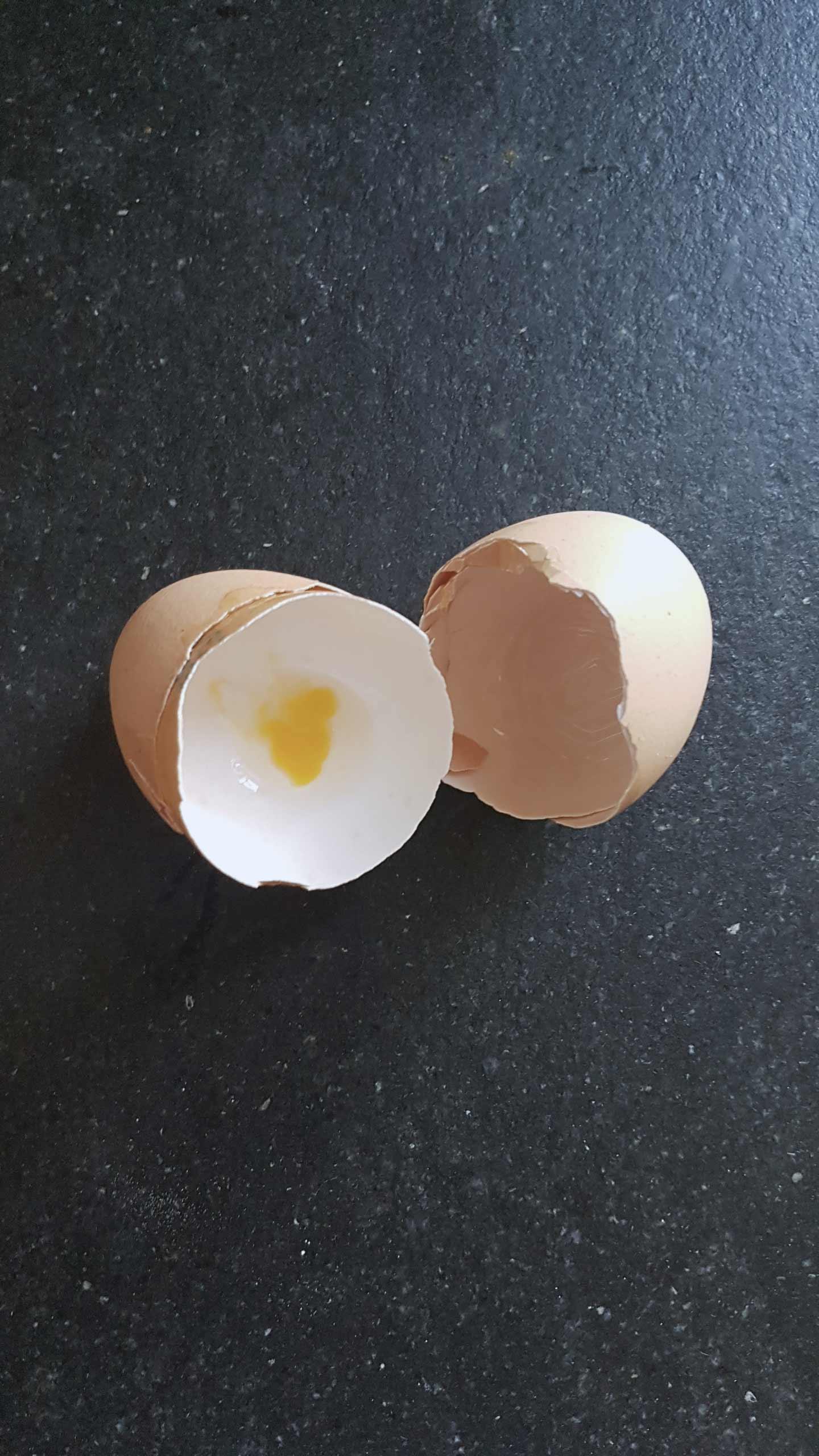 guscio-d'uovo