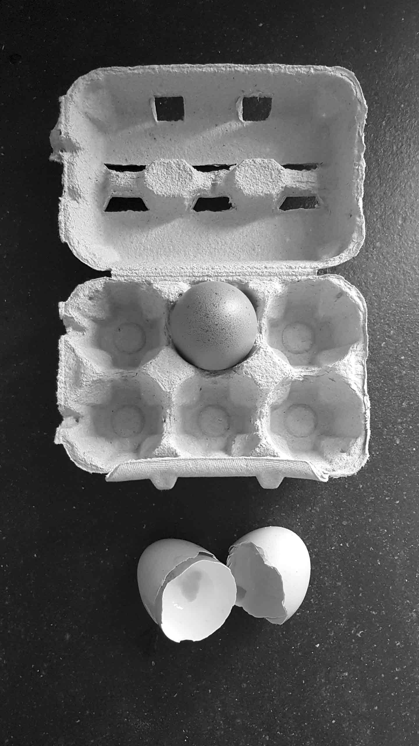 uova-con-scatola-bn