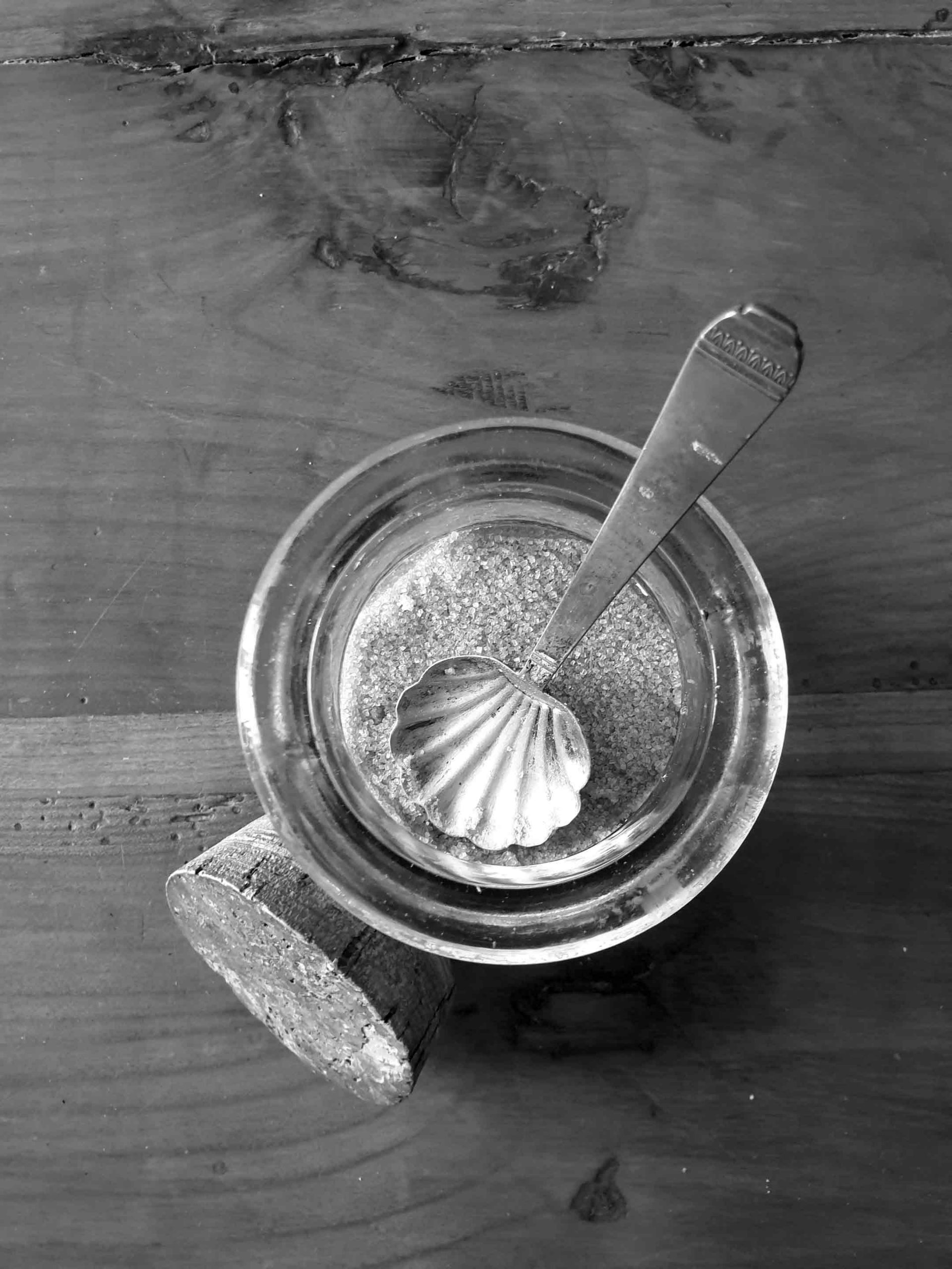 zucchero_canna_BN